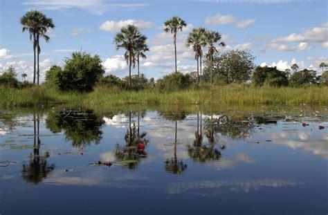 Botanischer Garten Windhoek by Highlights Namibia Und Botswana