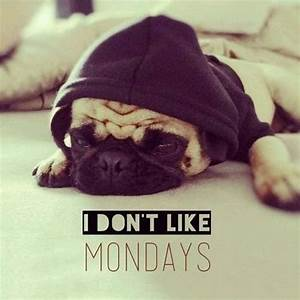 I Don't Like Mondays Pictures, Photos, and Images for ...