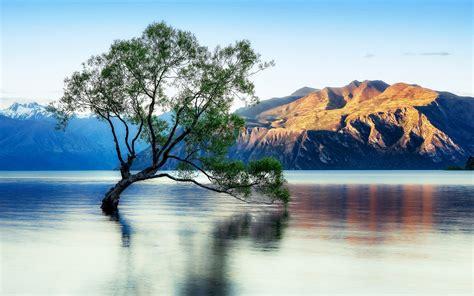 lake wanaka beautiful reflection  zealand wallpaper  desktop wallpaperscom