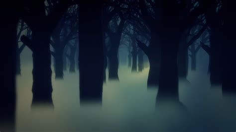 Animated Forest Wallpaper - darkness background 68 images