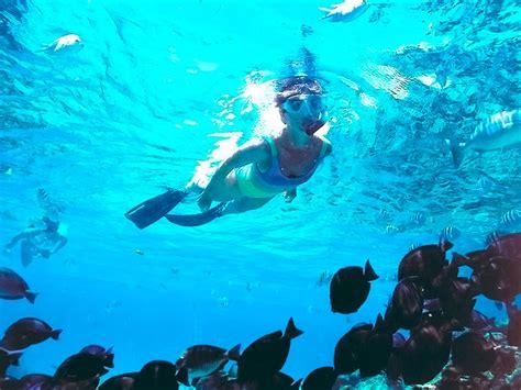 Full Day Isla Mujeres Catamaran Sailing Adventure by Catamarans Cancun Riviera Maya Alltrips