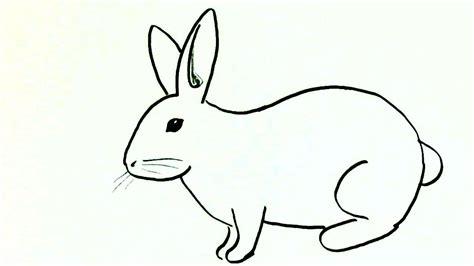 Rabbit Drawing Rabbit Drawing Easy Kids Drawing Art