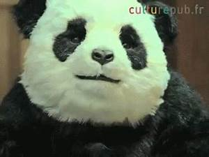 Panda Birthday GIFs - Find & Share on GIPHY