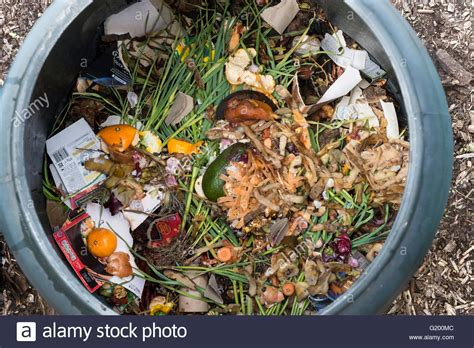 compost cuisine interior of a plastic compost bin for home use with food scraps and stock photo royalty free