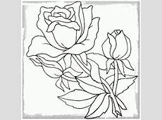 Dibujos De Flores Faciles Affordable Cmo Dibujar Un Clavel With
