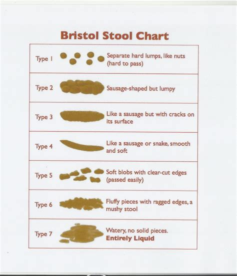 Bristol Stool Color Chart Pictures To Pin On Pinterest