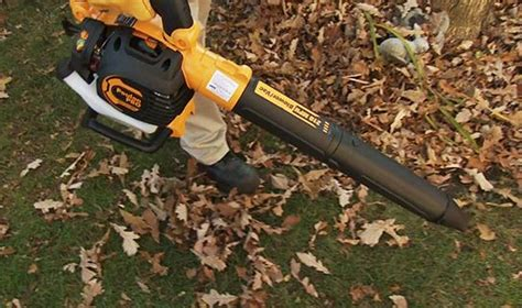 How To Choose A Leaf Blower  Canadian Tire