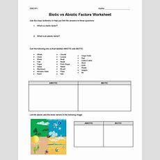 Biotic And Abiotic Factors Worksheet  Google Search  7th Grade Science  Pinterest Factors