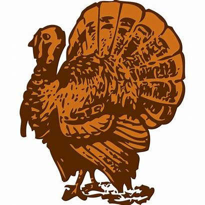 Turkey Clipart Platter Svg Thanksgiving Clip Cliparts