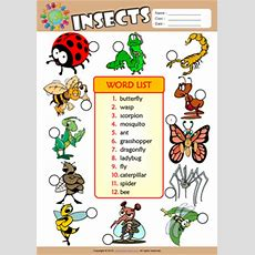 Insects Esl Printable Worksheets For Kids 3