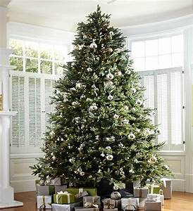 How to Choose the Right Christmas Tree Height | Balsam Hill