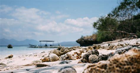 pulau menjangan bali barat daya tarik lokasi