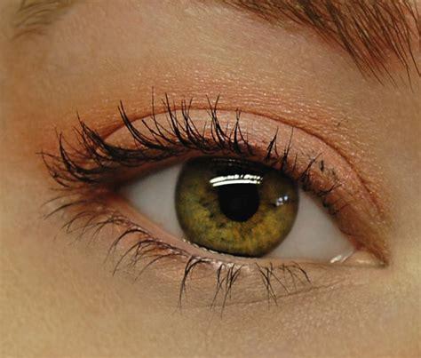 hazel eyes  eyeshadow  makeup  hazel eyes part