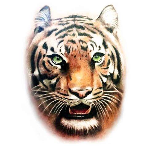 Tatouage Tete Tigre  Galerie Tatouage