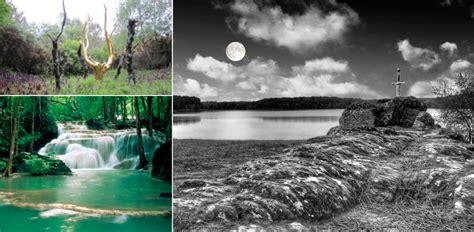 15 Merveilles Cachées Au Cœur De La Forêt De Brocéliande