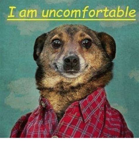 I Am Meme - i am uncomfortable dank meme on sizzle