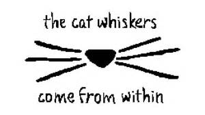 dan and phil cat whiskers pixilart the cat whiskers come from within dan and phil