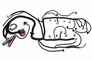 3906 3913 gen iv ls2 ls3 w 4l60e standalone wiring With ls2 wiring harness