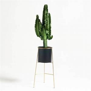 Plante D Intérieur Pas Cher : cache pot sur pied inaya m tal et laiton noir laiton la ~ Dailycaller-alerts.com Idées de Décoration