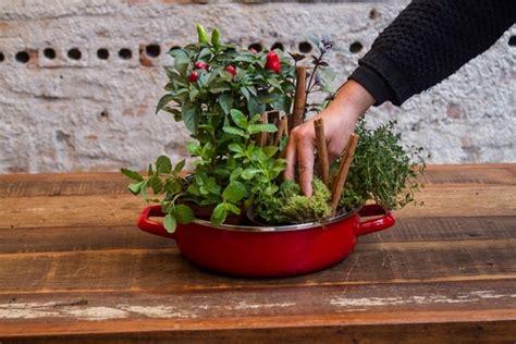 creative indoor herb garden grow herbs  vegetables