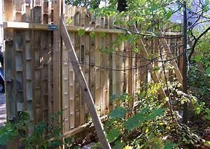 Zaun Aus Paletten Bauen : sichtschutz aus bambusrohr selber bauen halbschalen und bunte dicke bambusrohe online kaufen ~ Whattoseeinmadrid.com Haus und Dekorationen