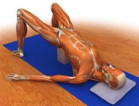 Yoga Piriformis Muscle Stretch