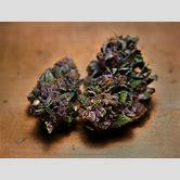 purple-sour-diesel