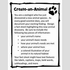 Best 25+ Ecosystem Activities Ideas On Pinterest  Food Chain Activities, Ecosystems 4th Grade