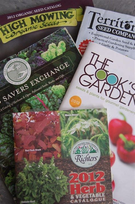 Using Mailorder Catalogs  How To Decipher Plant Catalogs