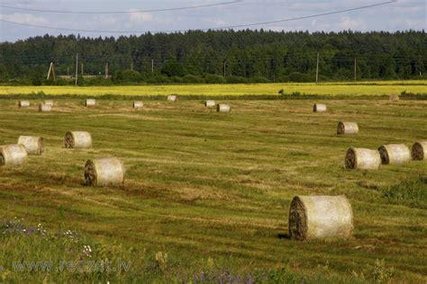 Ziņas lauksaimniekiem - Skrīveru novada pašvaldība