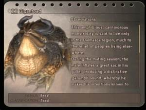Bestiary Final Fantasy XII Final Fantasy Wiki FANDOM