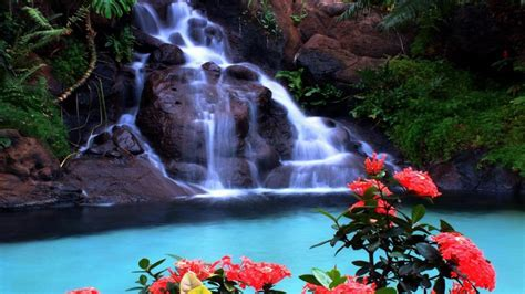 tropical waterfall wallpaper wallpapers13 com