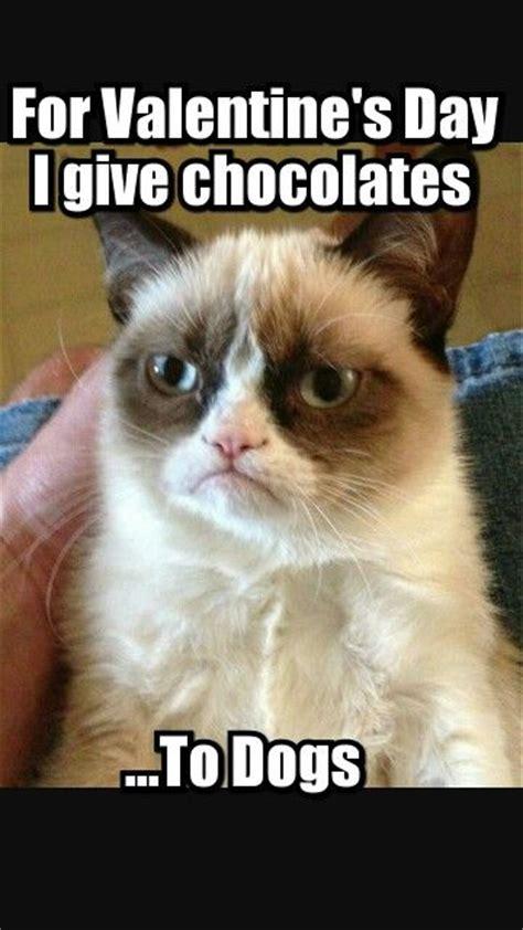 Grumpy Cat Meme Valentines Day - happy caturday valentine s edition jeanne owens author