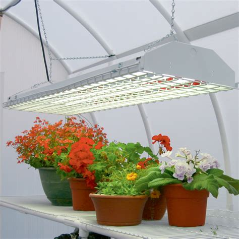 best grow light bulbs how to select the best grow light for indoor growing