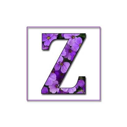 Alphabet Purple Flowers Letters Scrapbook Letter Flower