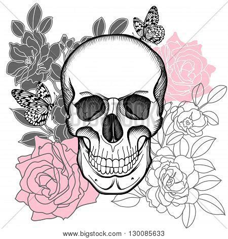 skull images illustrations vectors skull stock  images bigstock