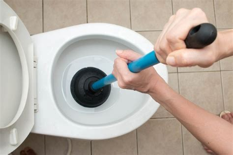 how to clean a blocked toilet a of tips
