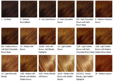All Hair Colour Shades by Antisociology 06 2010