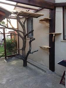 Maison Exterieur Pour Chat : l 39 arche de petry environnement ~ Dailycaller-alerts.com Idées de Décoration