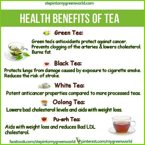 how much caffeine in green tea do you know the amazing health benefits of green tea pu erh tea oolong tea and white tea for