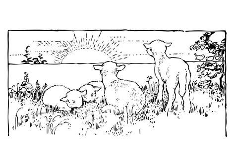 Jbl Boks Kleurplaat by Kleurplaat Landschap Met Lammetjes Afb 27460