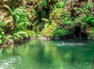 Teich Mit Wasserfall : wasserfall mit teich im garten stockfoto bild von entspannung gr n 66325852 ~ Markanthonyermac.com Haus und Dekorationen