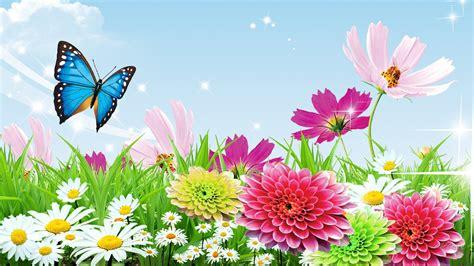 spring butterfly wallpaper widescreen outdoors wallpaper