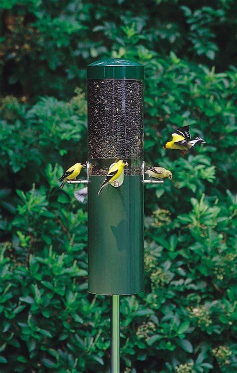 birds choice classic feeder  squirrel baffle  pole