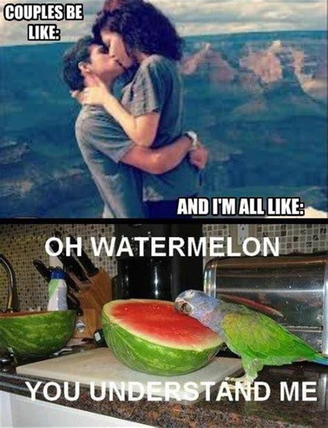 Watermelon Meme - oh watermelon meme by geestark memedroid