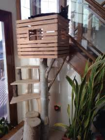 diy cat condo cat condo cat and furniture