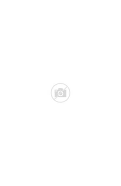 Biodata Mahasiswa Liliani Amir Nama Basuki Upcoming