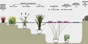 Plante Pour Bassin Extérieur : plantes de bassin santonine plantes aquatiques ~ Premium-room.com Idées de Décoration