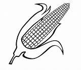 Corn Coloring Pages Cob Comments sketch template