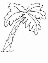 Coloring Tree Trees Palm Pattern Magnolia sketch template